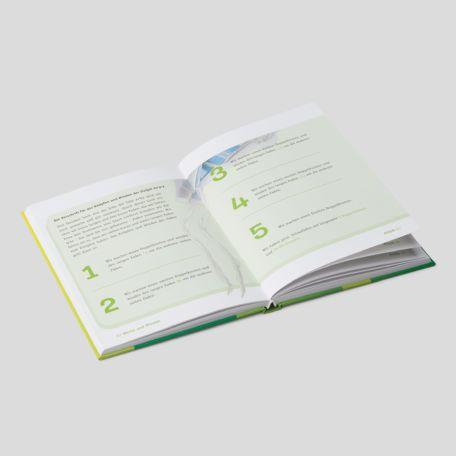 Buchgestaltung: Rosch Pina - Ophir - offen